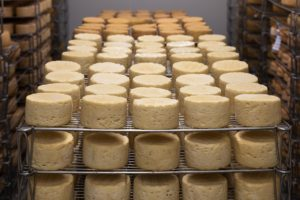 Cheese Refining Cave Milk Farm  - AnthonyArnaud / Pixabay